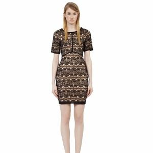 Reiss Sonia Black & Nude Lace Dress Size 2